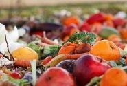 COVID-19 | Impacts On Food Waste