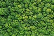 Is Sustainability Really For Everyone? | Opinion