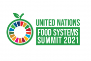 Transforming Our Food System | The UN Food Systems Summit