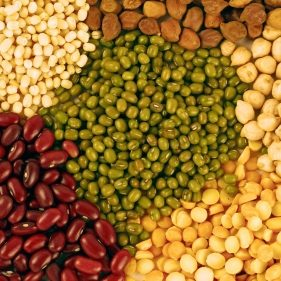 The Power of Pulses | Agriculture in Sub-Saharan Africa