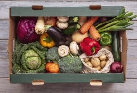 COVID-19: An Opportunity To Change The Global Food System? | Opinion