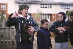 Keeping Chickens in Schools | How it works