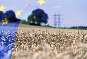 EU Common Agricultural Policy | 4 Things to Know About Farming Subsidies