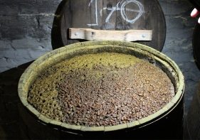 Traditional Soy Sauce Brewing | A Portrait in the Netherlands