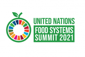 Transforming Our Food System   The UN Food Systems Summit